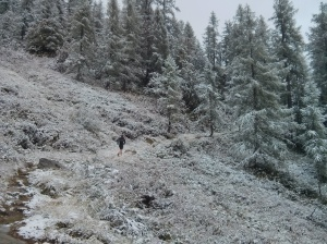 September snow fall at 1800m. Beautiful running but I had cold feet!