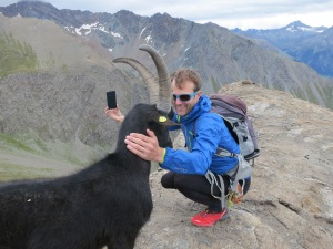"The goat ""selfie"""